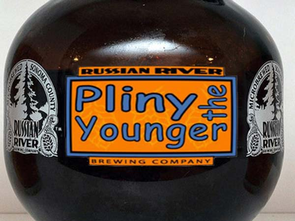 essays on pliny the younger Get a detailed pliny the younger biography from bookragscom.