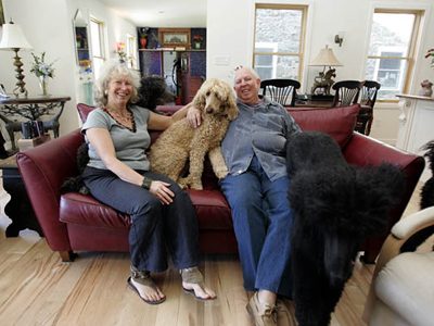 Michael and Meryl Joblin and a few of the five standard poodles they have in their home in Birchrunville, PA. ( David Swanson / Staff Photographer )