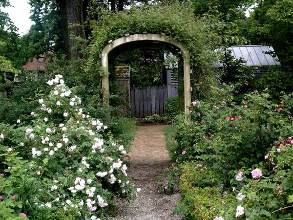 The Wyck Historic House and Gardens hold rose garden tours daily through May 30. (Photo via Wyck Historic House and Gardens Facebook)