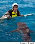 Samberg swims with the fishes