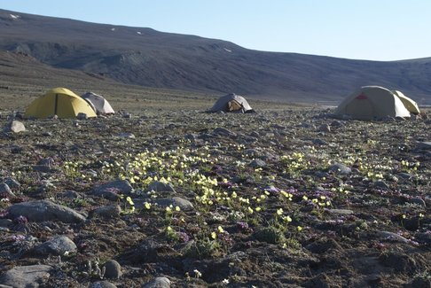 Our personal tents make a village-like home in this vast landscape. (Photo from a previous expedition by Ted Daeschler)