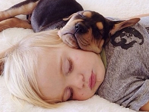Thoe and Beau take a nap.