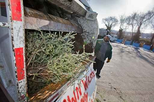 A discarded tree is being ground up after Christmas 2010. (Photo by David M. Warren/Inquirer Staff Photographer)