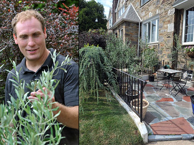 """The little patio of Rafferty´s Mayfair rowhouse holds containers with 16 olive trees. Having them, he says, """"is so cool."""" (Sharon Gekoski-Kimmel / Staff Photographer)"""