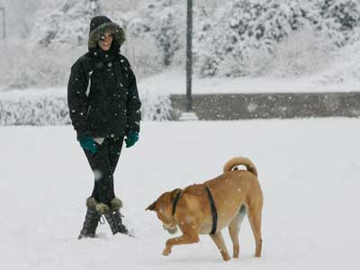 Kerri Fay plays with her dog, Savannah, in a park near 4th St. and I-676. ( Michael S. Wirtz / Staff Photographer)