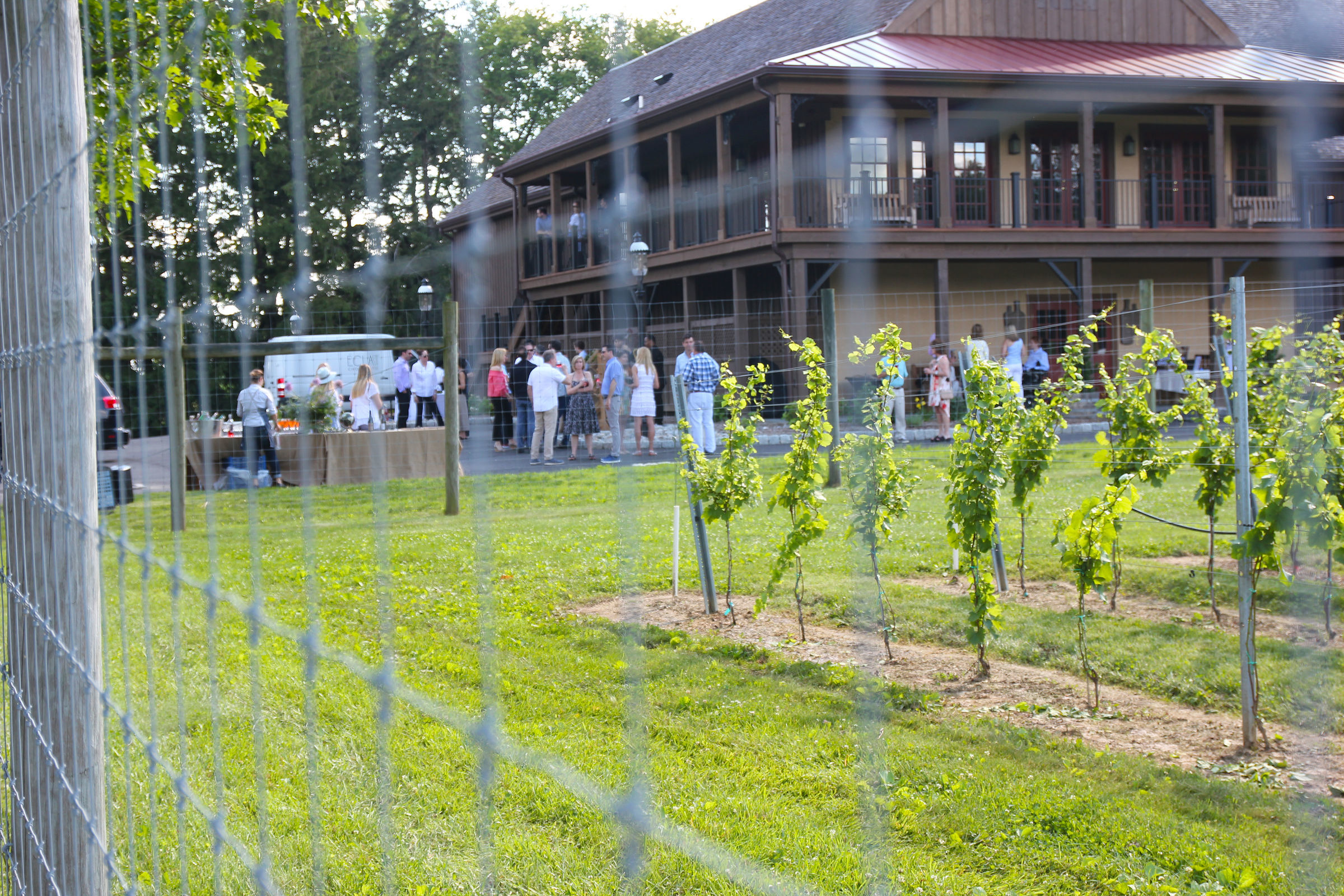 The attendees gathered by one of the vineyards at Karamoor. (MICHAEL KLEIN / Staff)