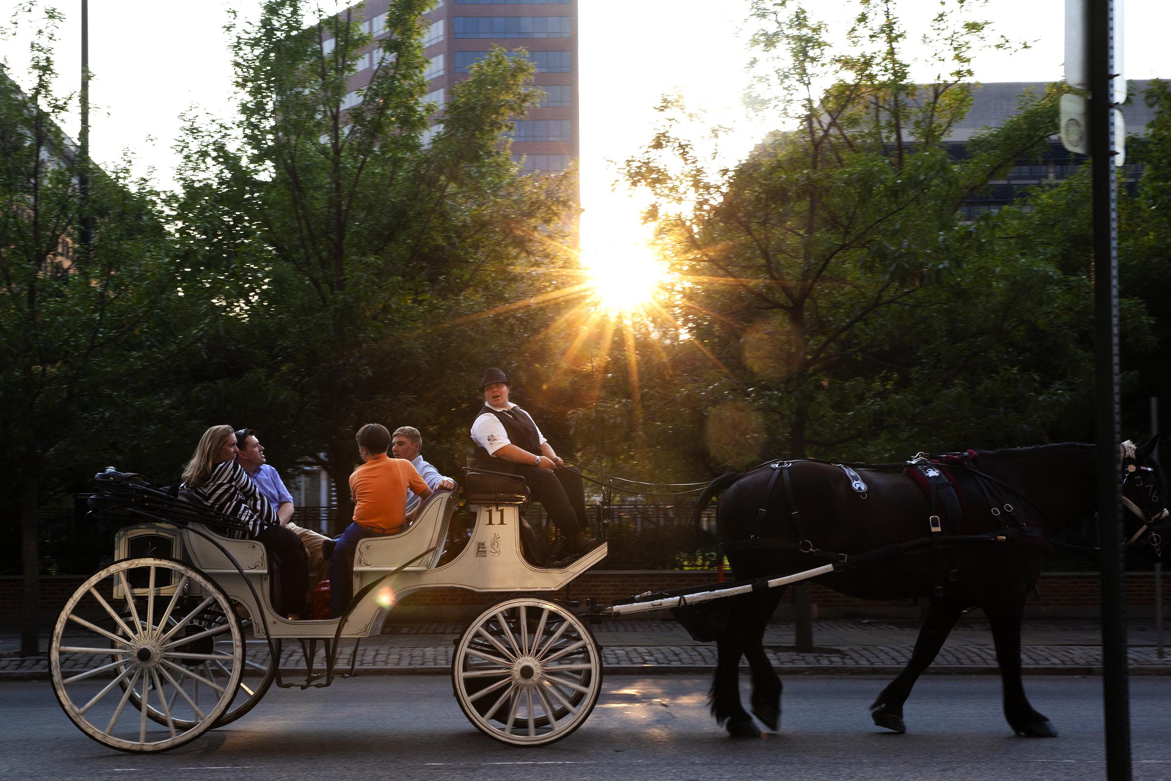 A 76 Carriage Tour